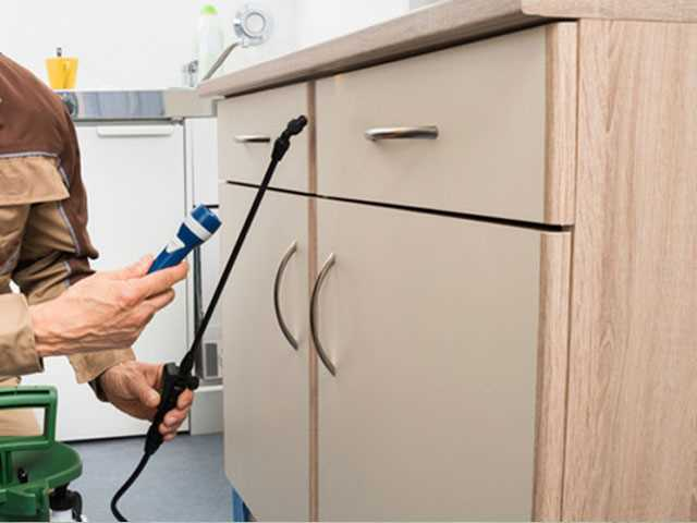 Do It Yourself Home Pest Control